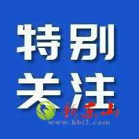 湖北省第七次全国人口普查主要数据情况