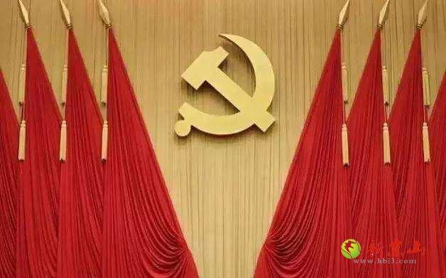 京山市永漋镇召开党代会,凝心聚力共谋发展