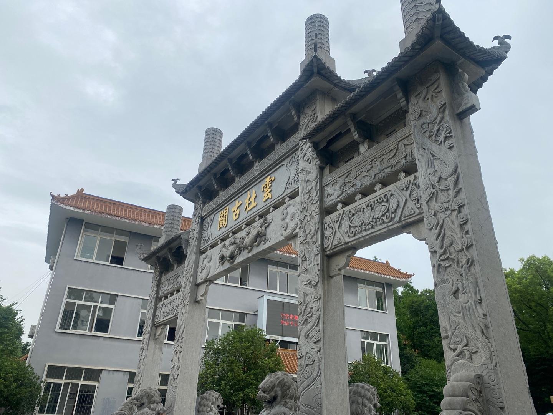 帮帮它们!文峰公园老博物馆旁有两只小奶狗